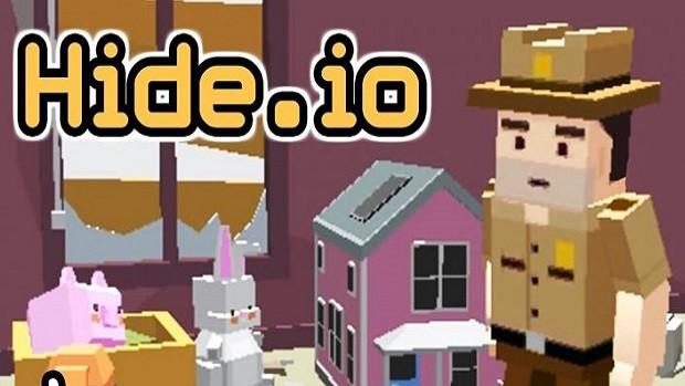 Hide.io Guide