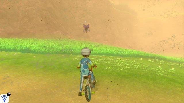 Pokemon di spada e scudo Pokemon Non lasciarti vedere