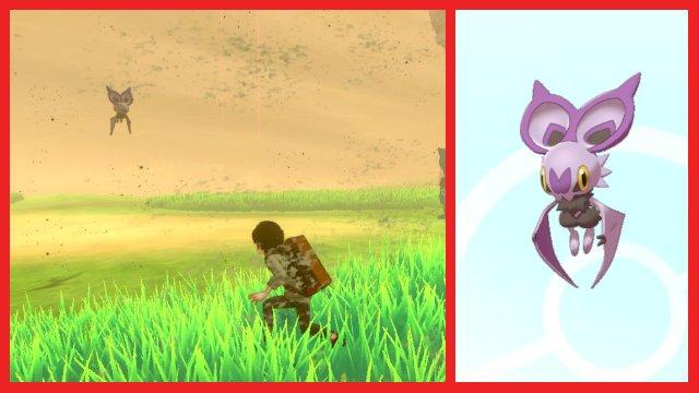 Come catturare Noibat nell'area Pokemon Spada e Scudo Wild