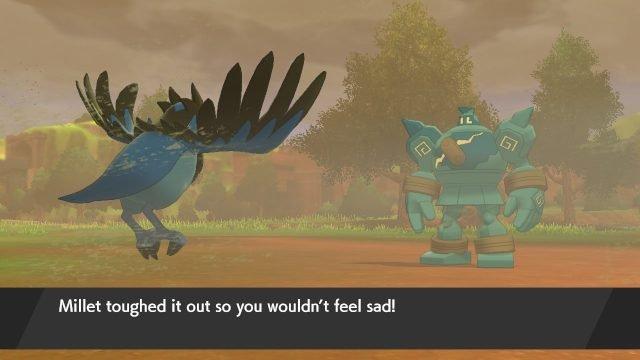 Qual è la differenza tra Affection e Friendship_Happiness in Pokemon Sword e Shield_