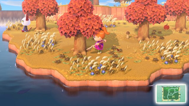 come nascondere la minimappa in Animal Crossing: New Horizons